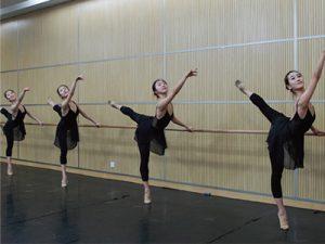 バレエしりや 野田スタジオ
