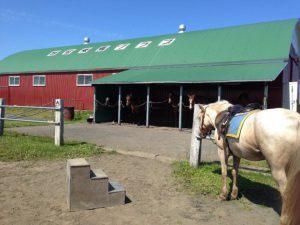 根室乗馬クラブ