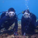 【宮古島】ダイビングライセンスのショップ、ツアー15選