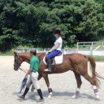 【福岡】乗馬レッスン、乗馬クラブ12選