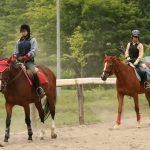 【札幌】乗馬レッスン、乗馬クラブ5選