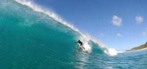 U4 SURF
