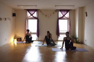 yoga nadi