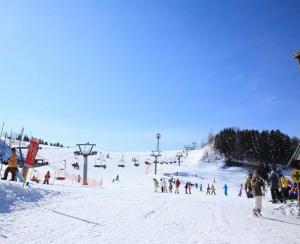 高柳スキー場